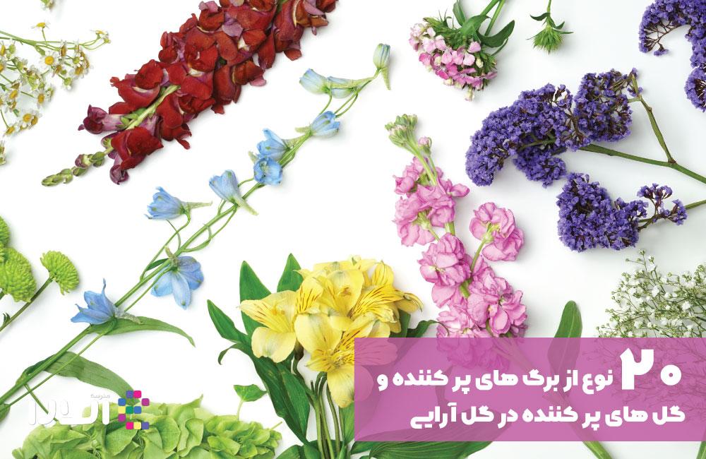 گل و برگ پرکننده فضا